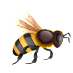 Follow the Bee to see all our job listings